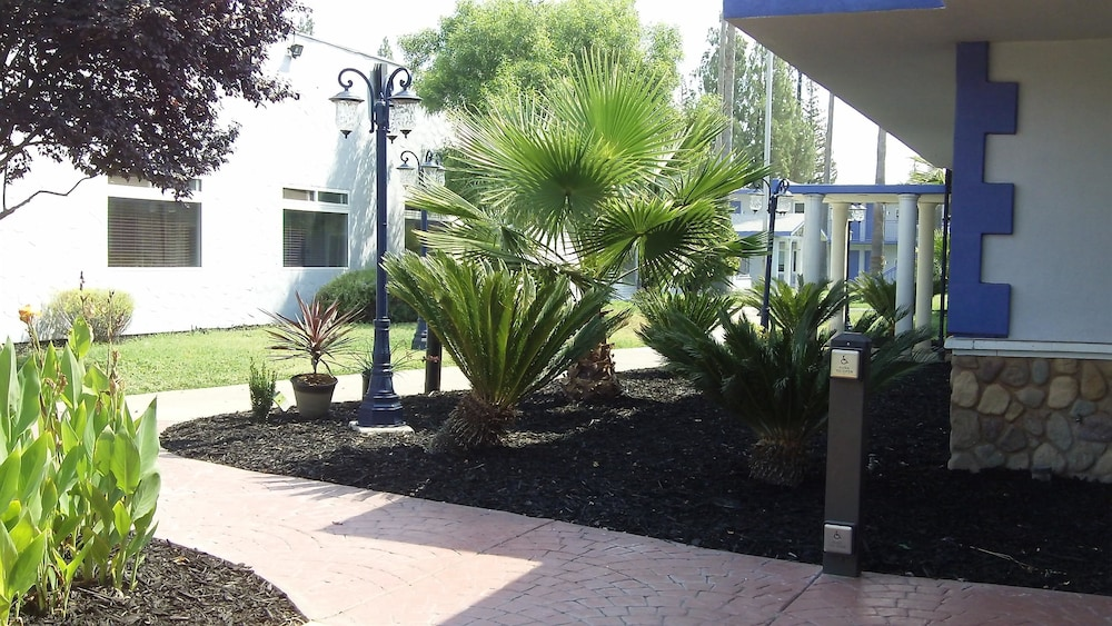Courtyard, SureStay Plus Hotel by Best Western Sacramento Cal Expo
