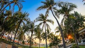 On the beach, beach cabanas, beach towels, beach bar