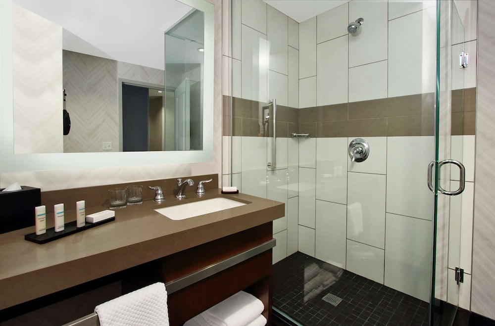 Bathroom, Embassy Suites By Hilton Pittsburgh Downtown