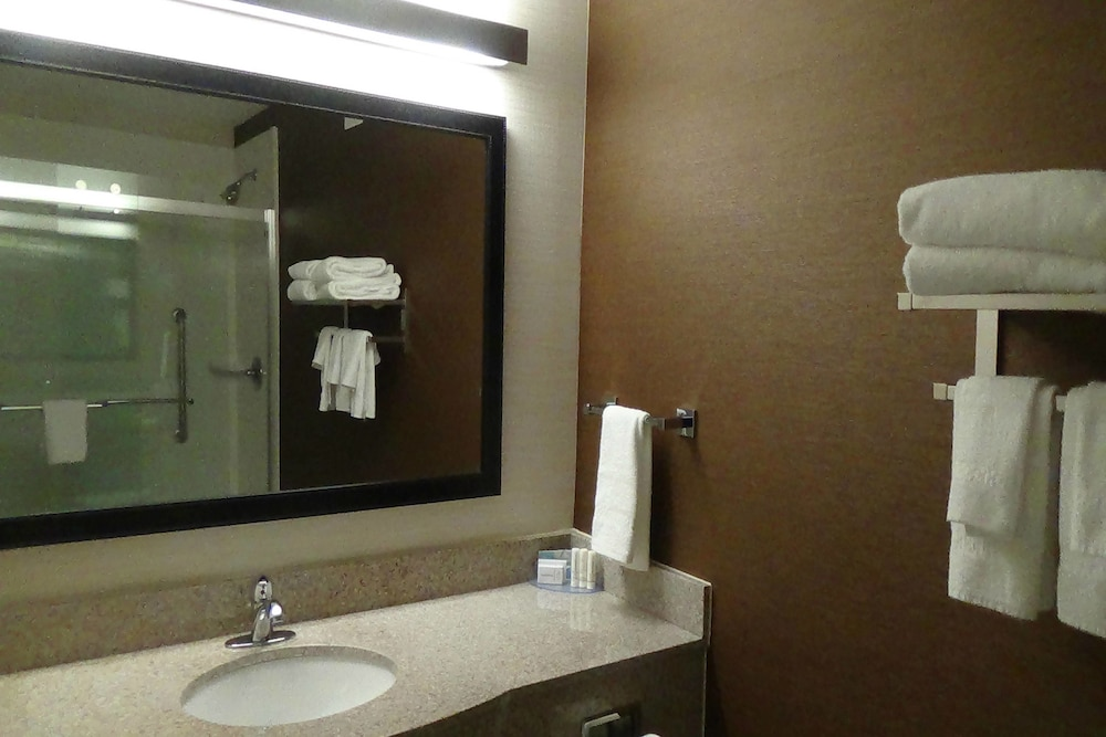 Bathroom, Fairfield Inn & Suites by Marriott Atlanta Buford/Mall of Georgia