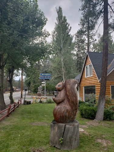 Best Cabins in Big Bear Lake for 2019: Find Cheap $46 Cabins