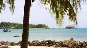 On the beach, beach bar, kayaking, fishing