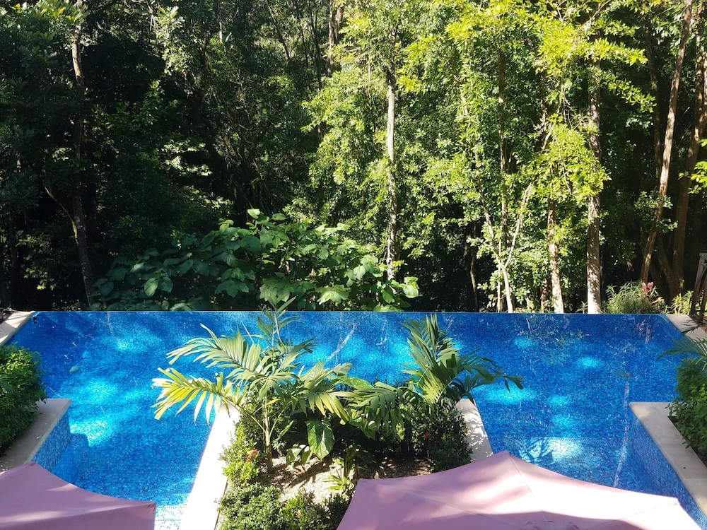 Infinity Pool, Table Rock Jungle Lodge