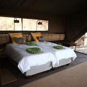 Jackalberry Tented Camp