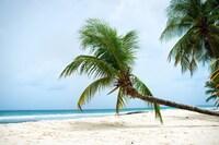 White Sands Beach Condos (14 of 21)