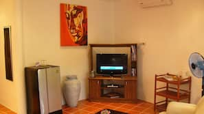 TV with satellite channels