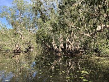 Mary River Floodplain, Kakadu, Northern Territory, Australia.