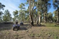 Bamurru Plains (1 of 22)