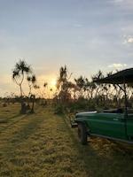Bamurru Plains (7 of 22)