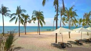 海灘、海灘酒吧