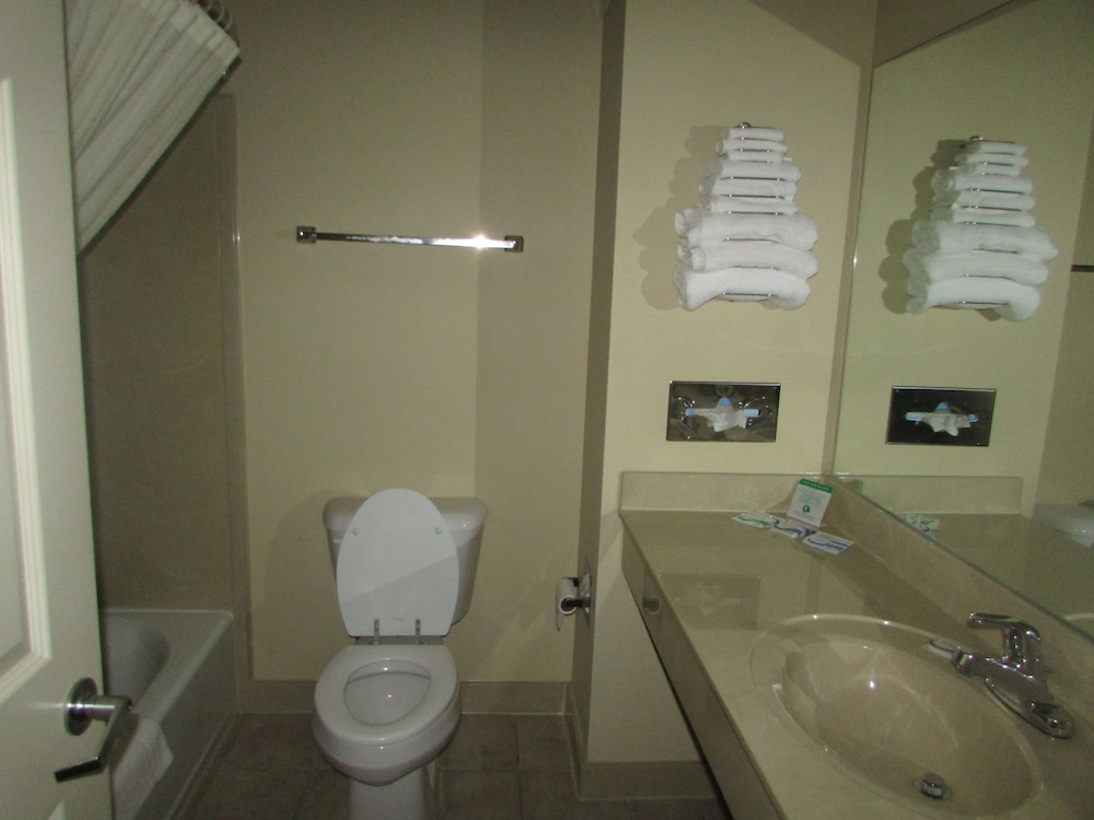 Bathroom, Plantation Oaks Suites & Inn