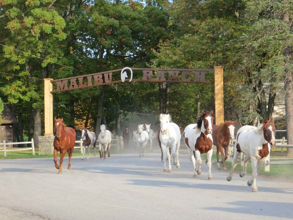 Featured Image, Malibu Dude Ranch