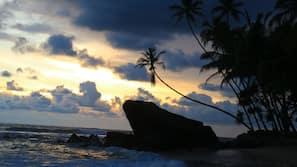 在海滩、水肺潜水
