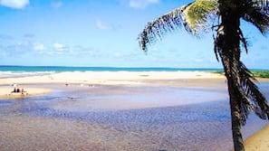 Perto da praia, serviço de traslado de/para a praia, guarda-sóis