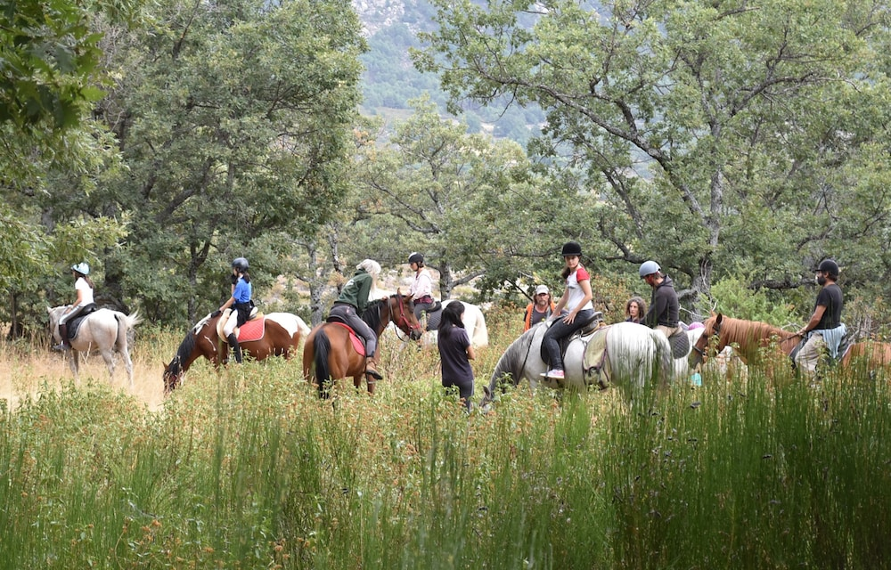 Horse Riding, Casitas de la Sierra