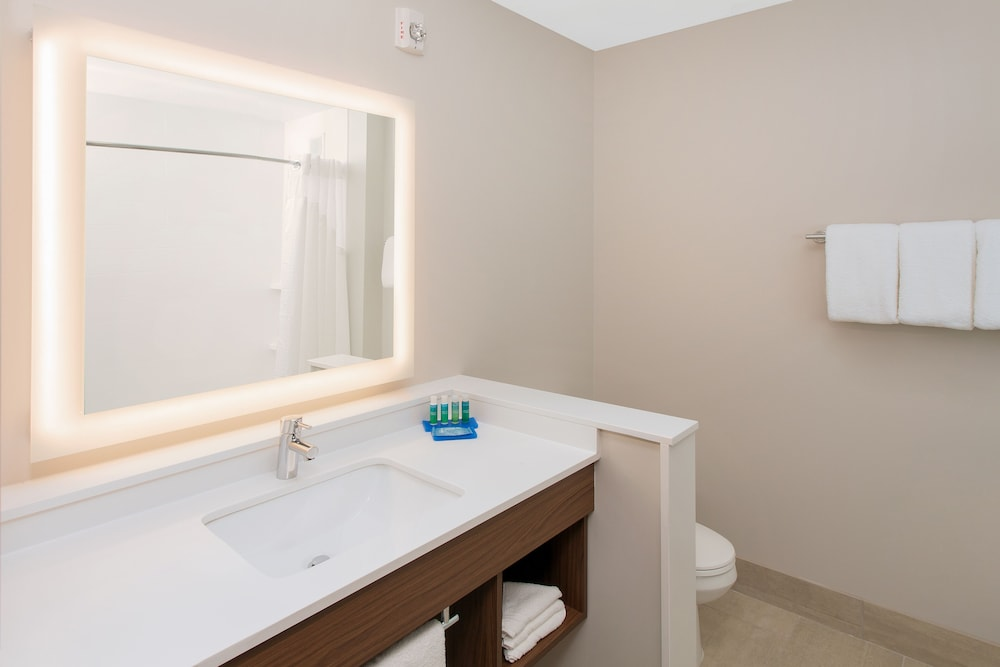 Bathroom, Holiday Inn Express and Suites Detroit/Sterling Heights, an IHG Hotel