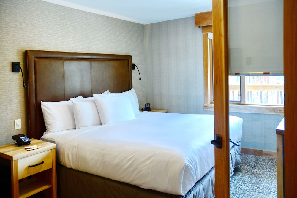 Room, Moose Hotel And Suites