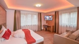 Pension Patricia - Kaprun Hotels