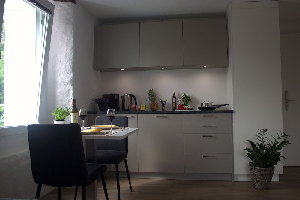 Private Kitchenette, Marco Polo Business Apartments - Wohlen