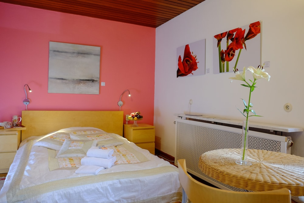 Rheinriver Guesthouse Boutique Art Hotel In Cologne