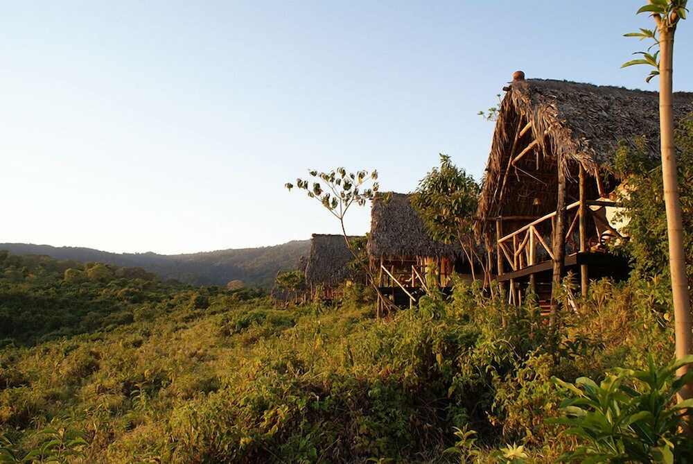 Ngorongoro crater lodge reviews