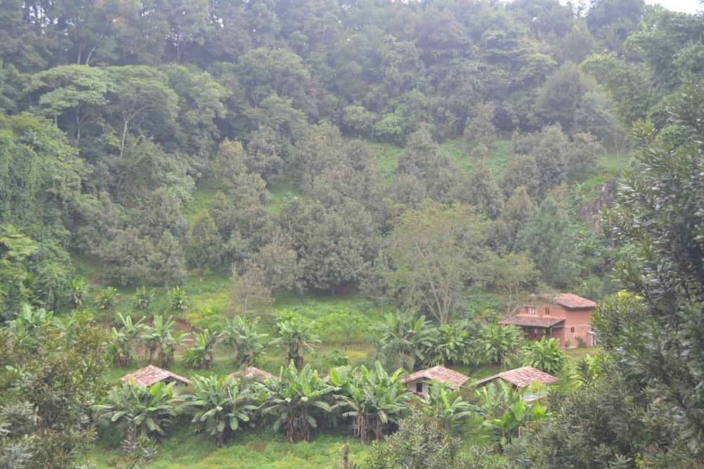 La Jicarita Eco Hotel In Xalapa Hotel Rates Reviews On Orbitz