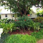 Bird of Paradise Captiva by RedAwning