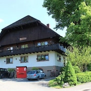 Vacation Apartment in Zell am Harmersbach 8955 1 Br apts by RedAwning