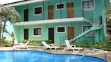 Green Forest of Coco Beach Studios - Coco Hotels