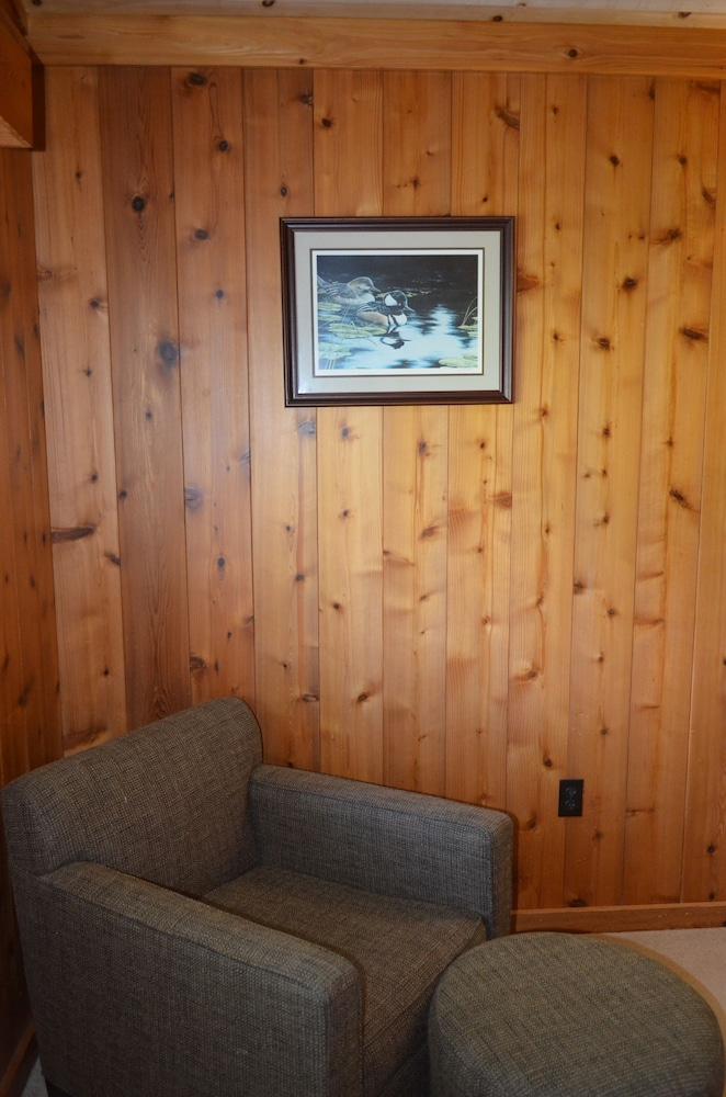 Room, Foggy Mountain Lodge