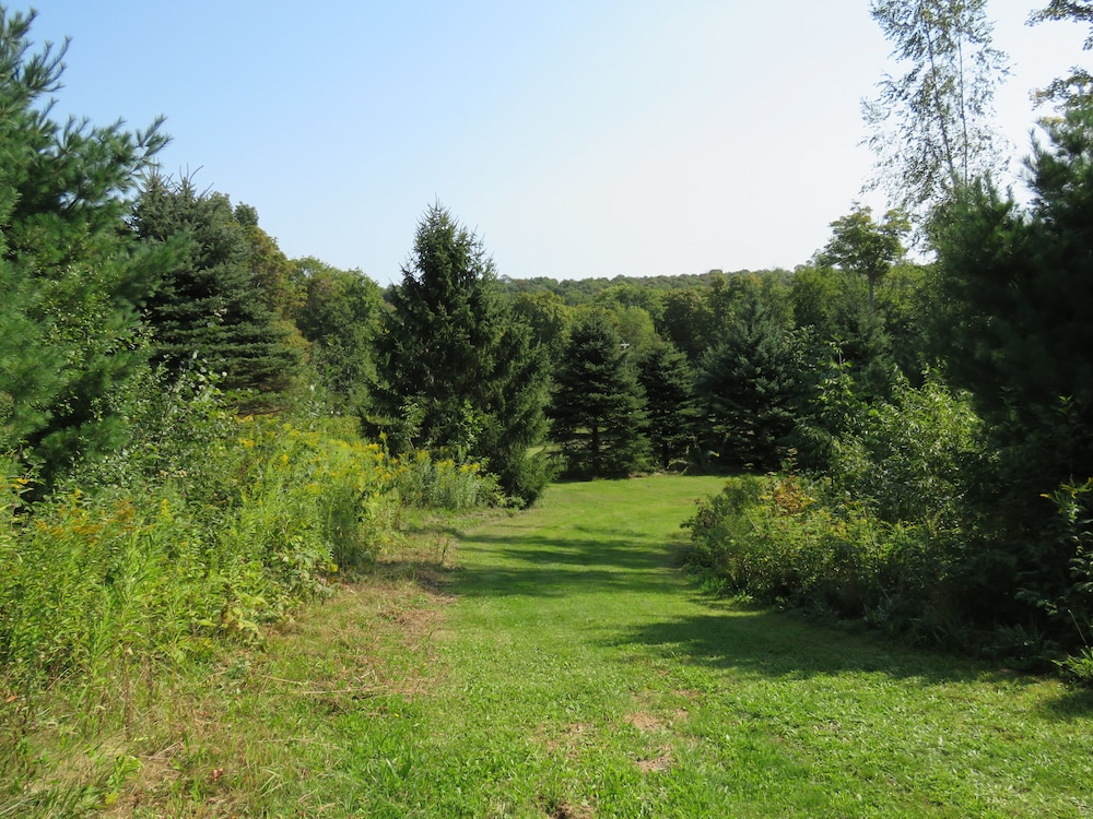 Property Grounds, Tug Hill Resort