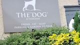 The Dog at Wingham - Canterbury Hotels