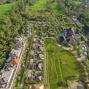 Visesa Ubud Resort