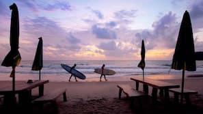 海灘、滑浪風帆、獨木舟