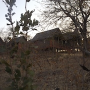 Lion Roars Lodge