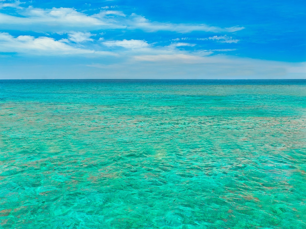Oceans edge key west hotel marina in florida keys for Ocean honda service