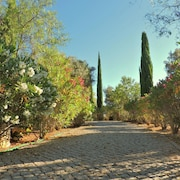 Private Garden 4 Bedroom Villa by Algarve Rentals