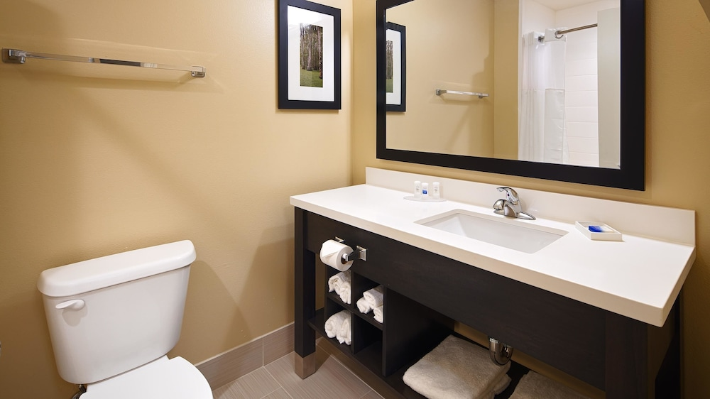 Bathroom, Best Western Plus New Orleans Airport Hotel