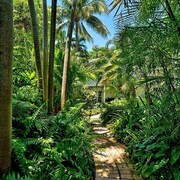 Key West Escapes - Luxury Yoga Vacations