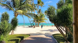 Beach shuttle