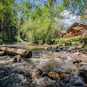 Colorado Bear Creek Cabins