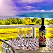 A Cayuga LakeFront Inn-Ithaca Hotel Alternative