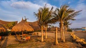 On the beach, black sand, free beach shuttle, sun-loungers