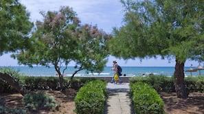 在海灘附近、白沙
