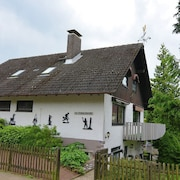 Large Apartment in the Harz