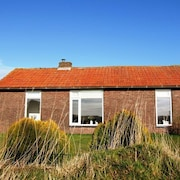 Bungalow for Four Persons in Hushed Texel Village With Nature