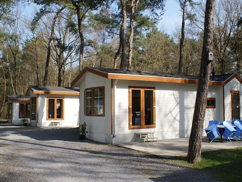 Comfortably Furnished Chalets in the Woods, on the Holiday Park De Reebok