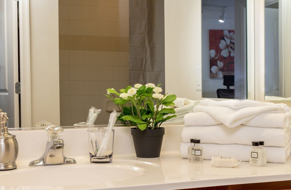 Bathroom Amenities, Capitol Hill Fully Furnished Apartments, Sleeps 5-6 Guests