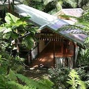 Daintree Secrets Rainforest Sanctuary
