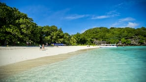Beach nearby, snorkelling, beach bar, kayaking
